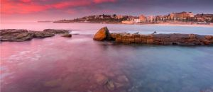 Tourism Listing Partner Coogee Beach Accommodation