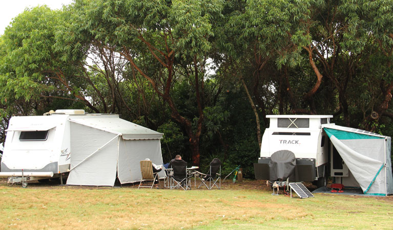 Pretty Beach campground - Murramarang National Park - Tourism Bookings WA