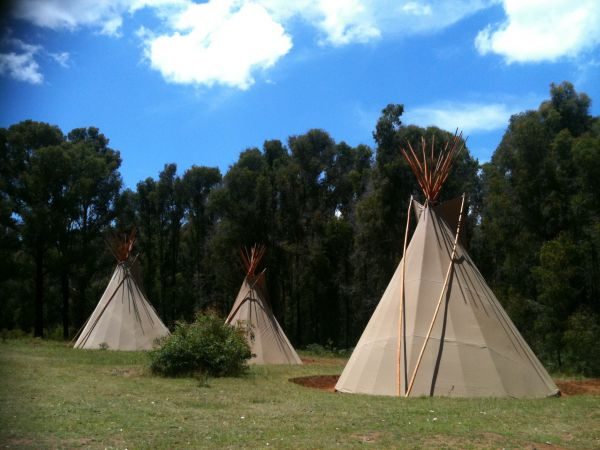 Kinglake Forest Adventures Camp - Tourism Bookings WA