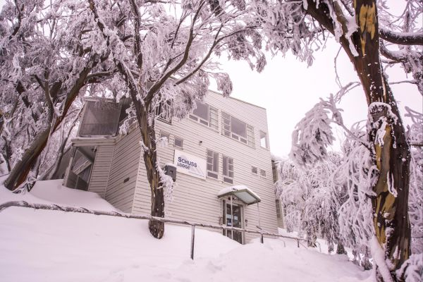 Schuss Lodge Mt Buller - Tourism Bookings WA