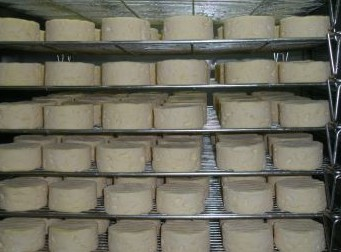 Witches Chase Cheese Co