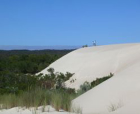 Yeagerup Sand Dunes - Tourism Bookings WA