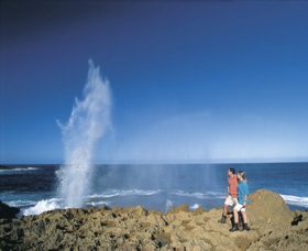 The Blowholes Carnarvon - Tourism Bookings WA