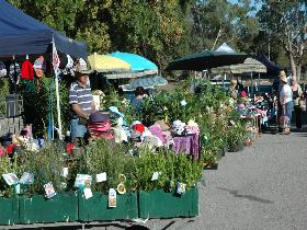 Meadows Monthly Market - Tourism Bookings WA