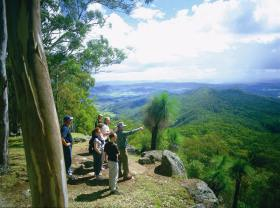 Gold Coast Hinterland Great Walk - Tourism Bookings WA