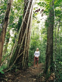 Wet Tropics - Tourism Bookings WA