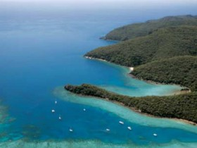 Butterfly Bay - Hook Island - Tourism Bookings WA