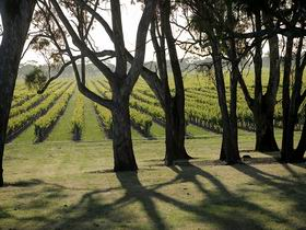 Henry's Drive Vignerons - Tourism Bookings WA