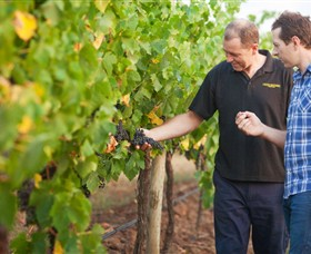 Fratin Brothers Vineyard - Tourism Bookings WA