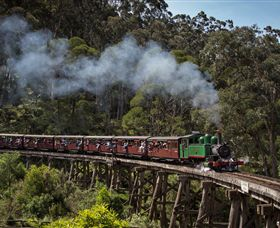 Puffing Billy Steam Railway - Tourism Bookings WA