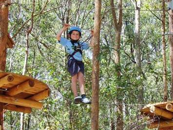 TreeTops Newcastle - Tourism Bookings WA