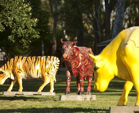 Greater Shepparton's Moooving Art - Tourism Bookings WA