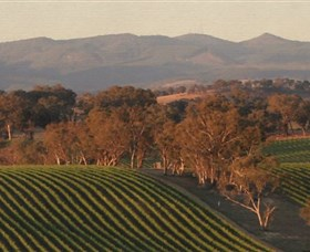Angullong Wines - Tourism Bookings WA