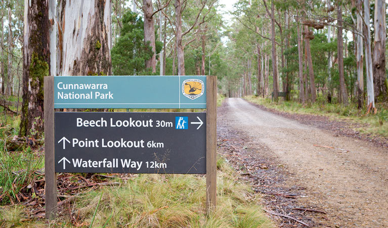Beech lookout - Tourism Bookings WA