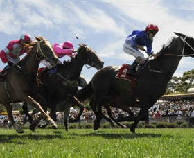 Moruya Racecourse - Tourism Bookings WA
