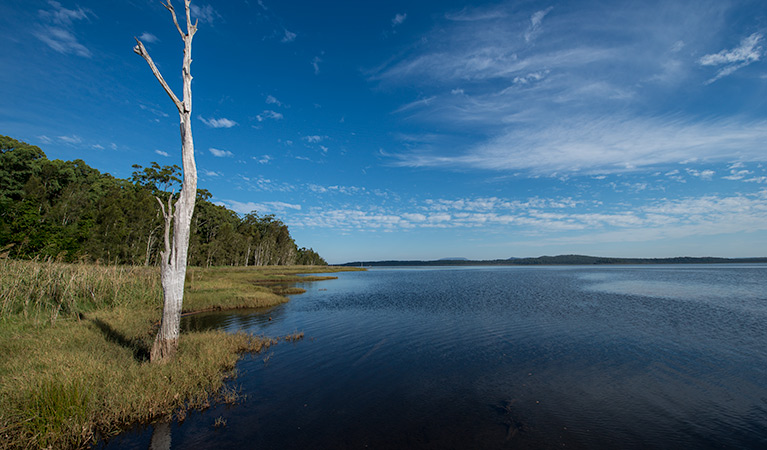 Lake Innes Nature Reserve - Tourism Bookings WA