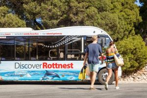 Rottnest Island Tour from Perth or Fremantle - Tourism Bookings WA