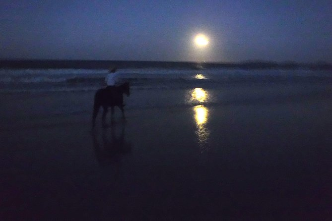 Full Moon Horse Ride at Rainbow Beach - Tourism Bookings WA