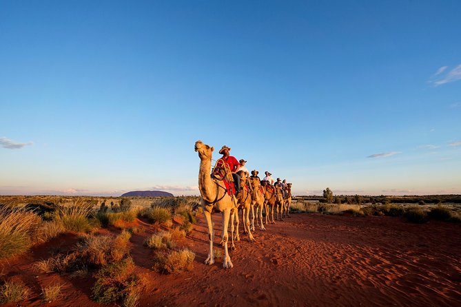 Uluru Camel Express Sunrise or Sunset Tours - Tourism Bookings WA