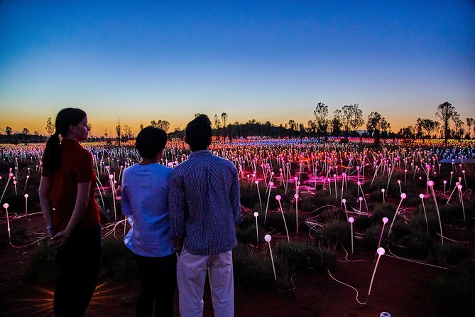 Uluru Field of Light Sunrise Tour - Tourism Bookings WA