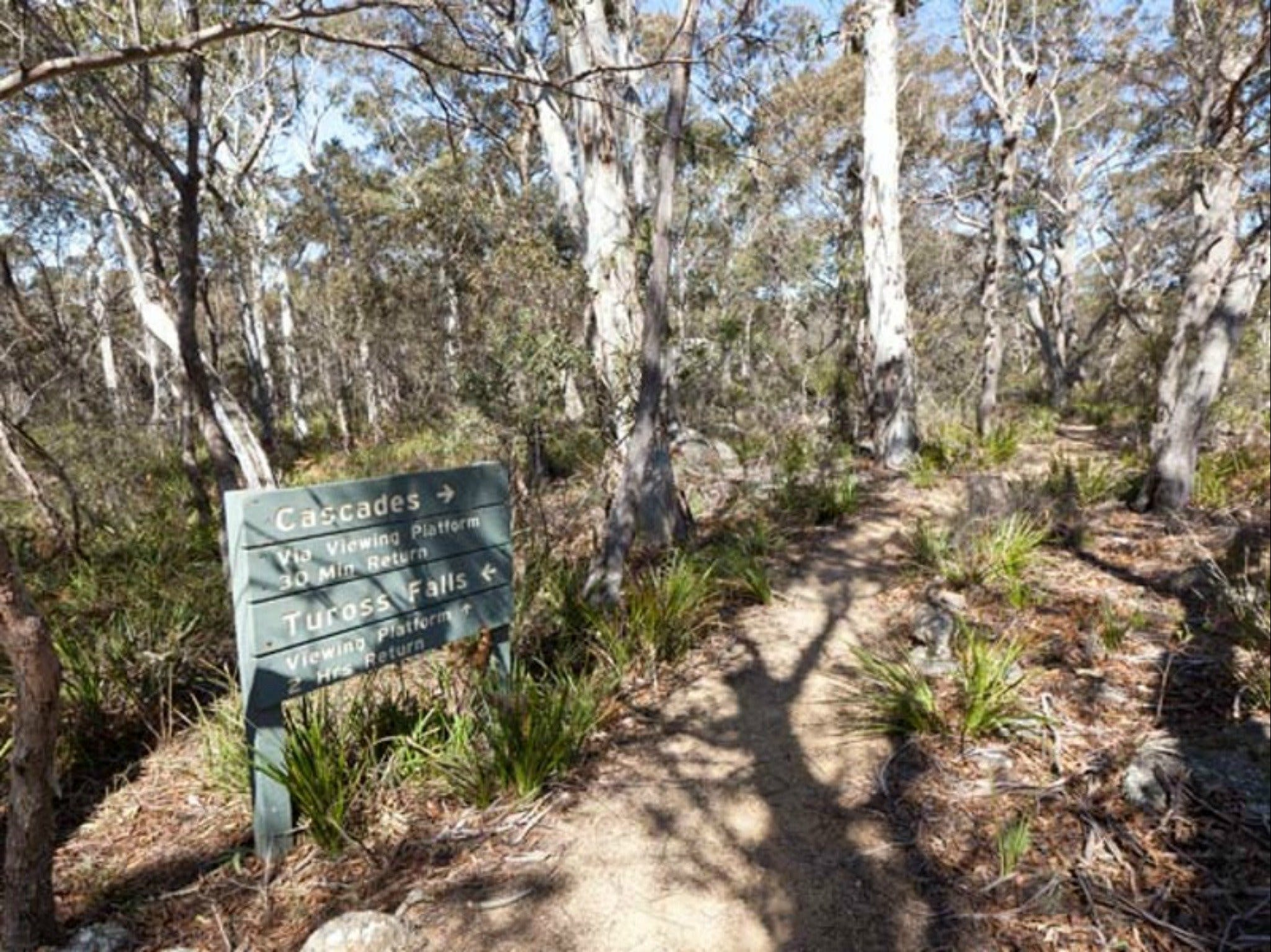 Cascades walking track and viewing platform - Tourism Bookings WA
