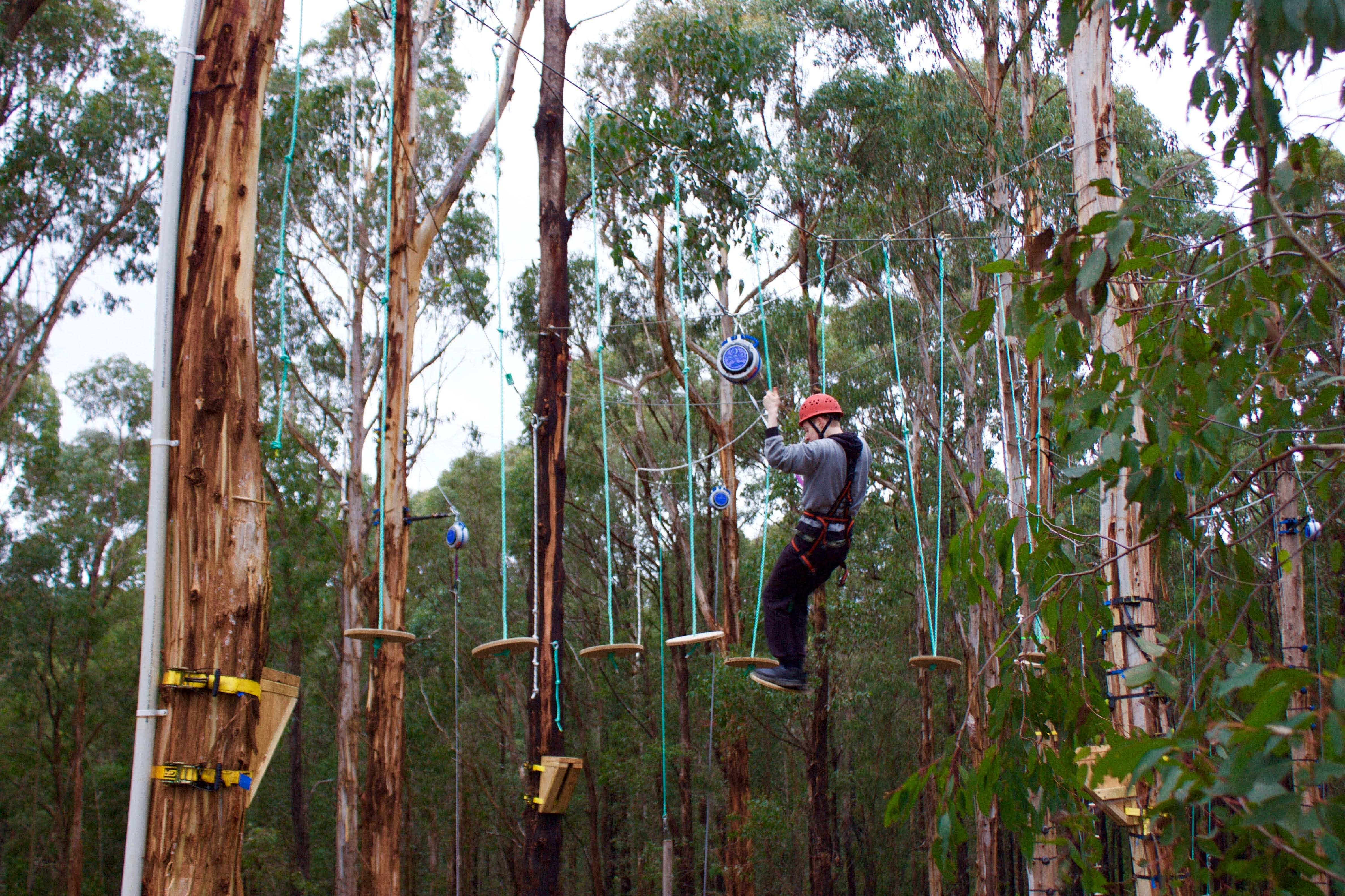 Kinglake Forest Adventures - Tourism Bookings WA