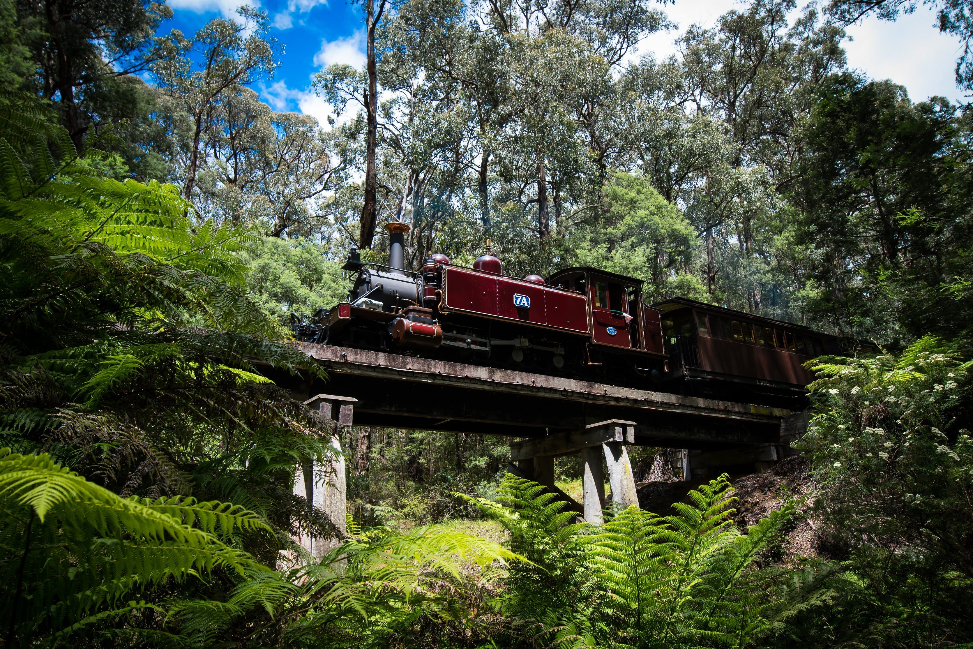 Puffing Billy Railway - Tourism Bookings WA
