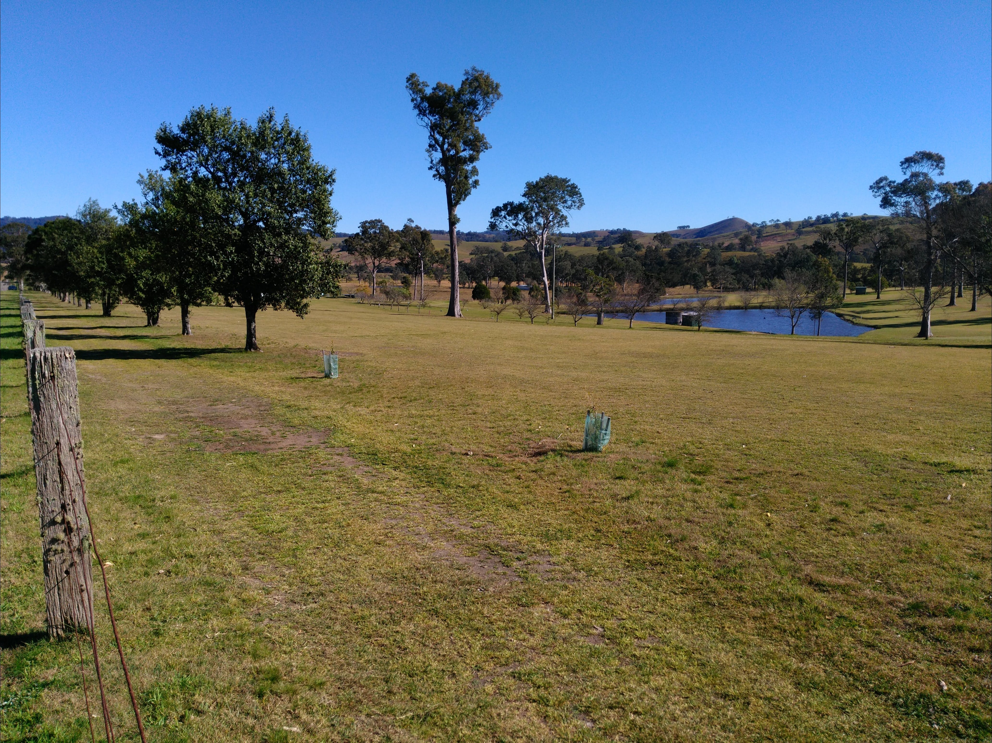 Dungog and District Golf Club - Tourism Bookings WA