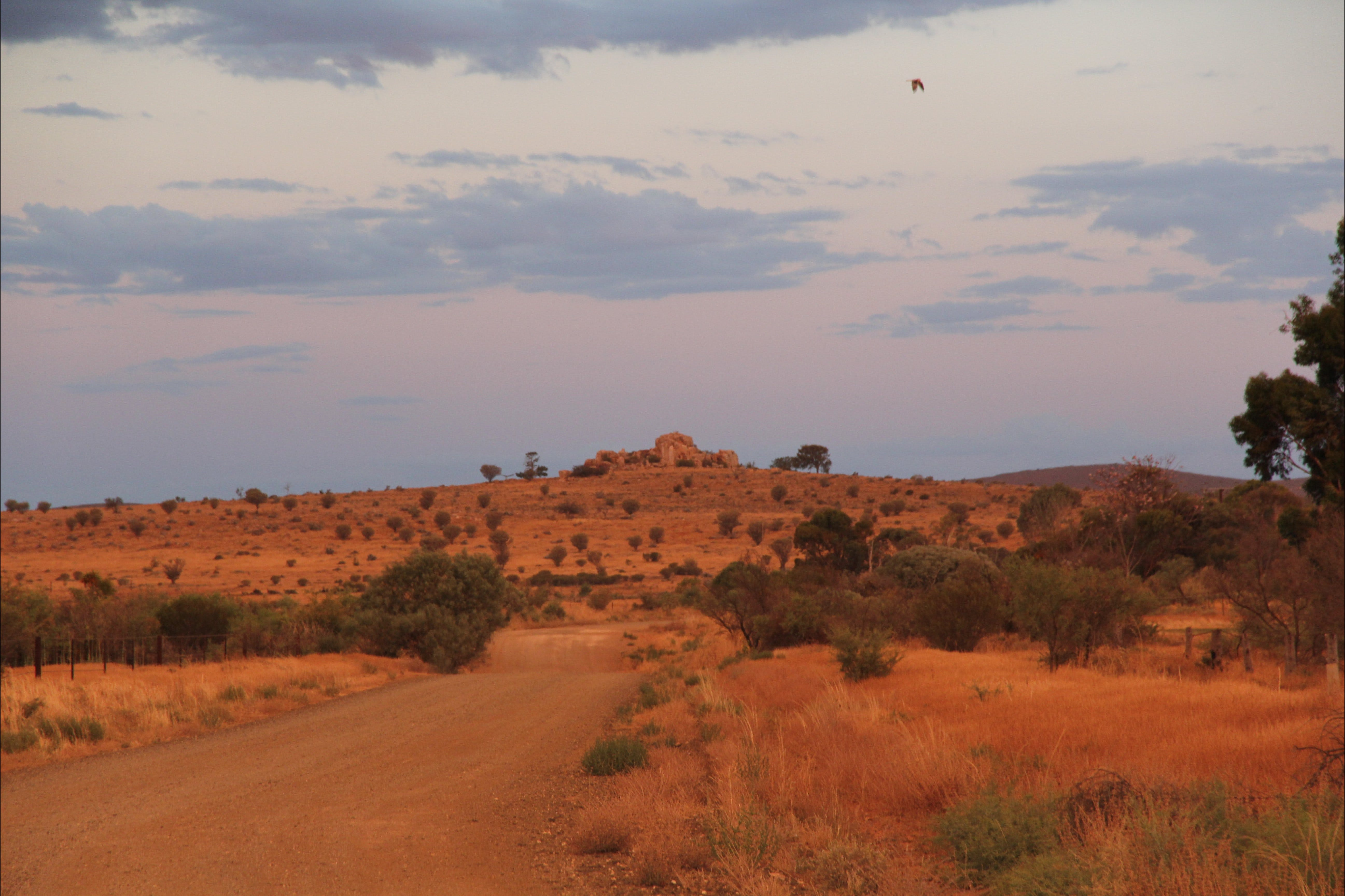Castle Rock walk and Lookout - Tourism Bookings WA