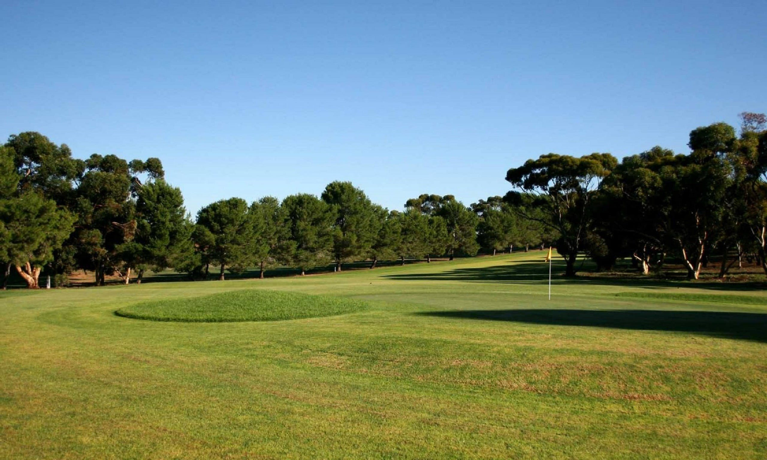 Mannum Golf Club - Tourism Bookings WA