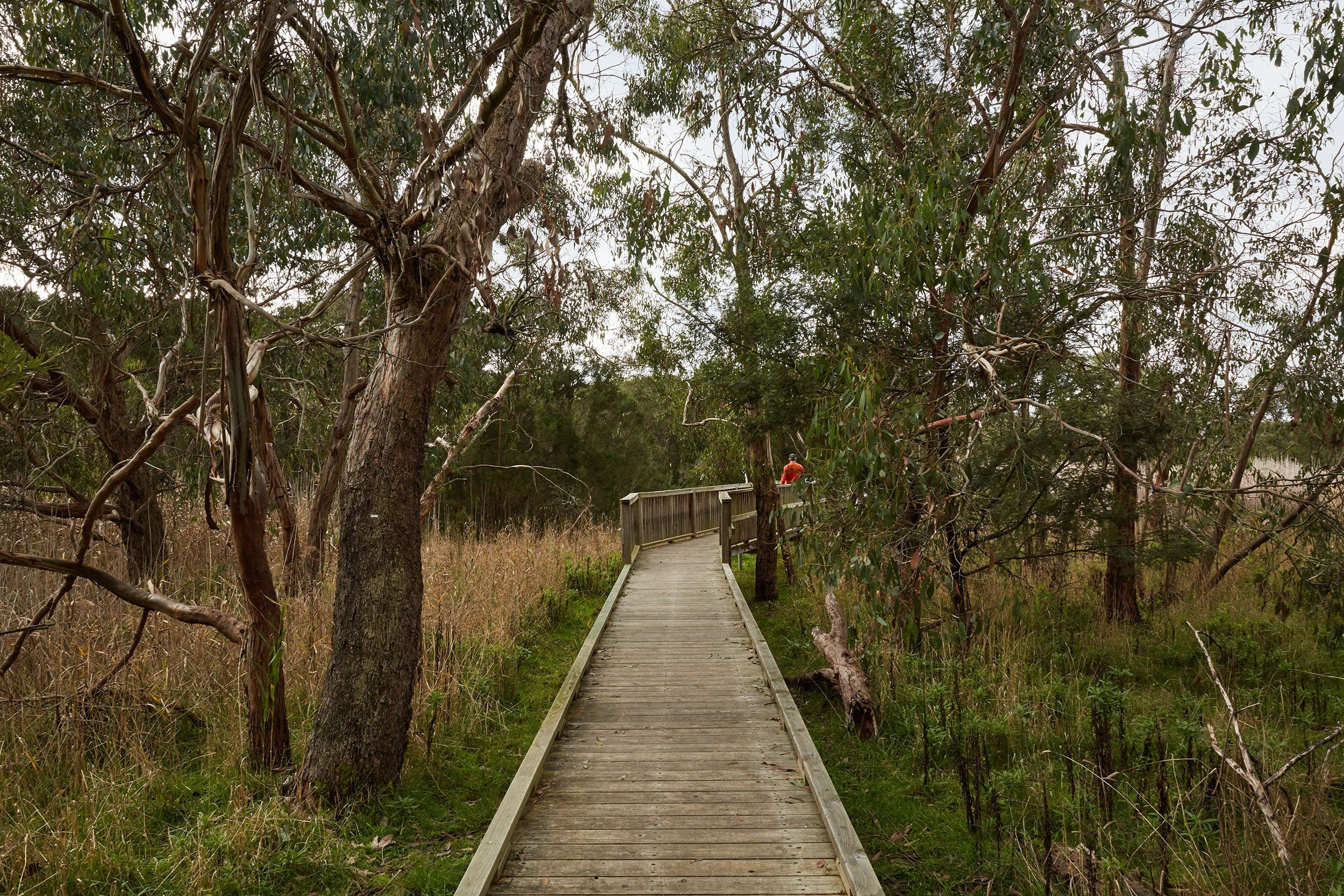 The Briars Park Walking Trails - Tourism Bookings WA