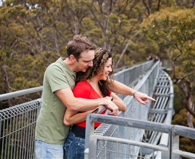 Valley of the Giants Tree Top Walk - Tourism Bookings WA