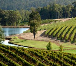 Brookhampton Estate Vineyard - Tourism Bookings WA