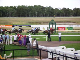 Pinjarra Race Club - Tourism Bookings WA