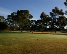 Winchelsea Golf Club - Tourism Bookings WA