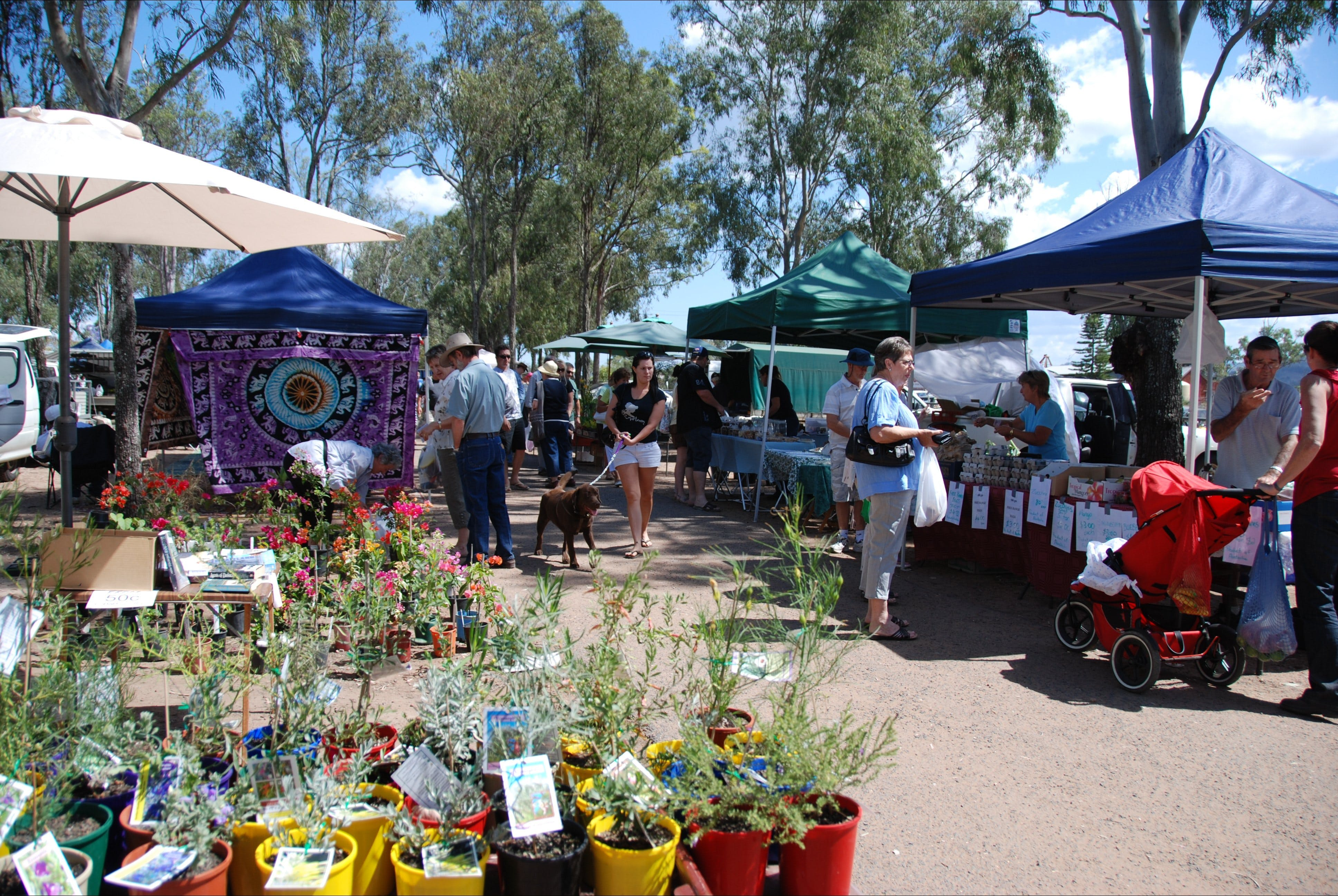 Fernvale Country Markets - Tourism Bookings WA