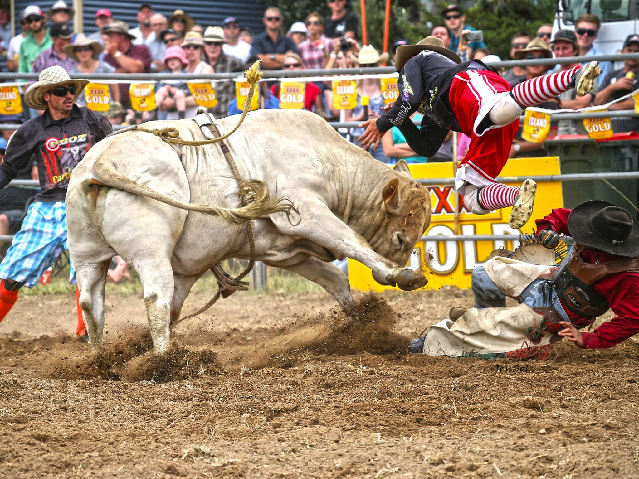 Jindabyne's Man From Snowy River Rodeo - Tourism Bookings WA