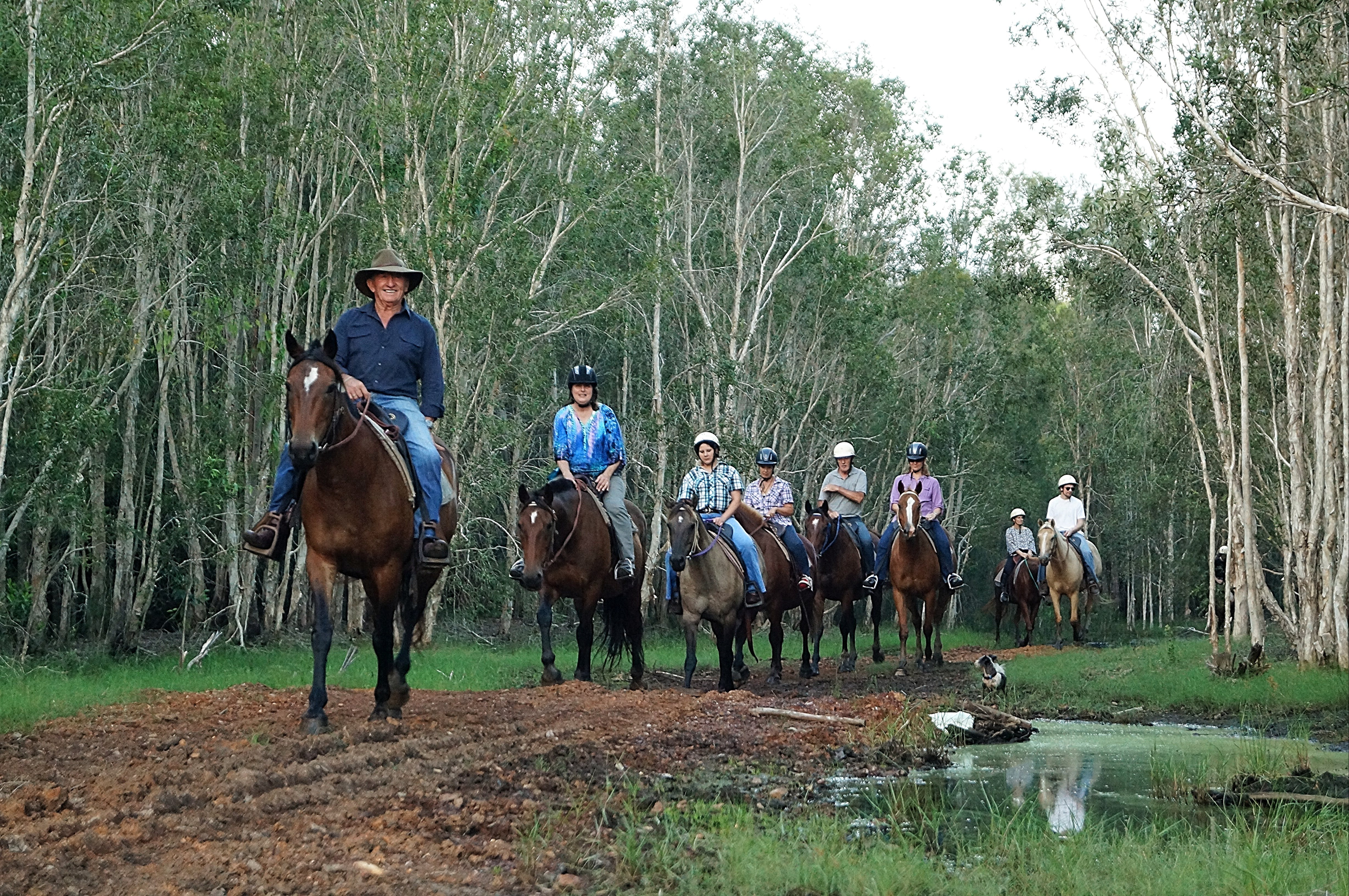 Night Horse Ride and Dinner - Tourism Bookings WA