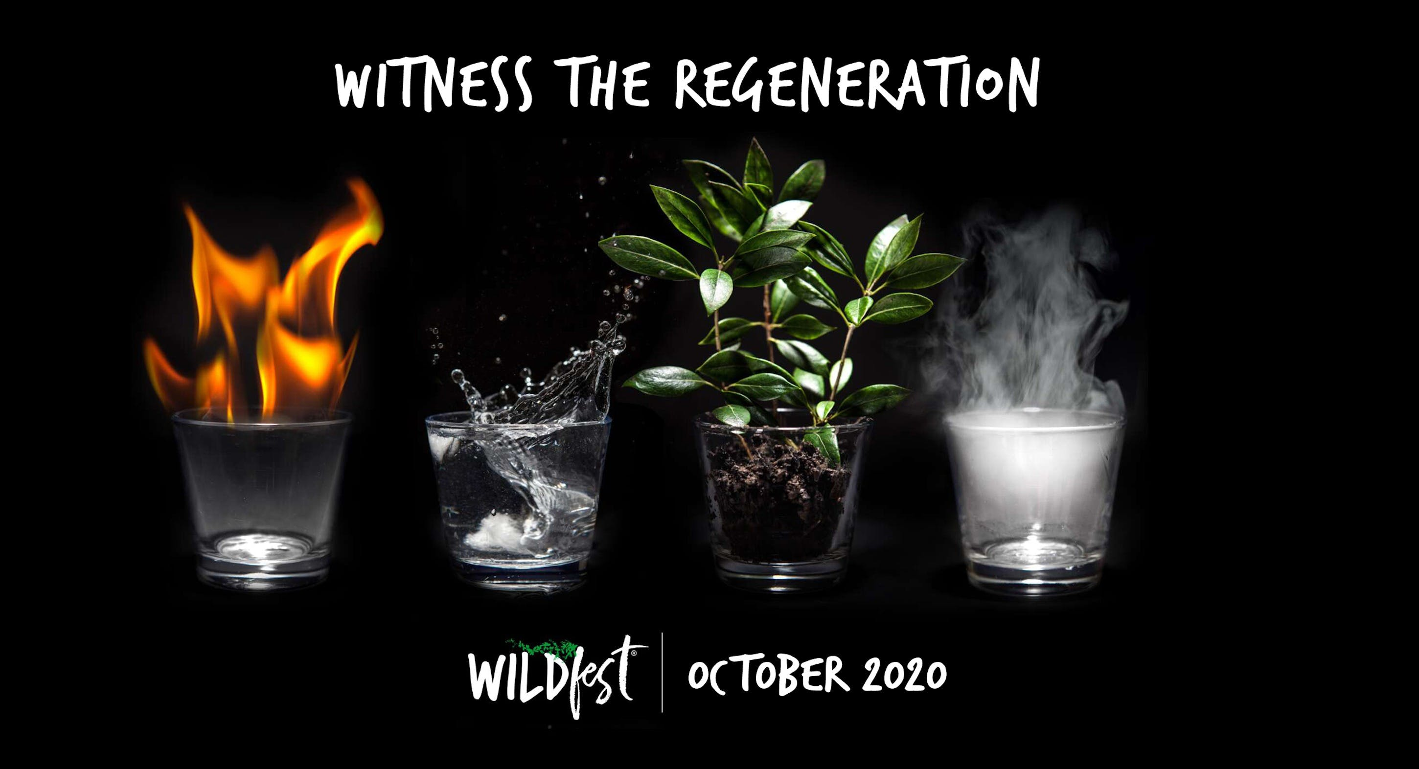 Wildfest - Annual Festival - Tourism Bookings WA