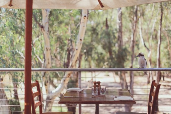 Morrisons Winery  Restaurant - Tourism Bookings WA