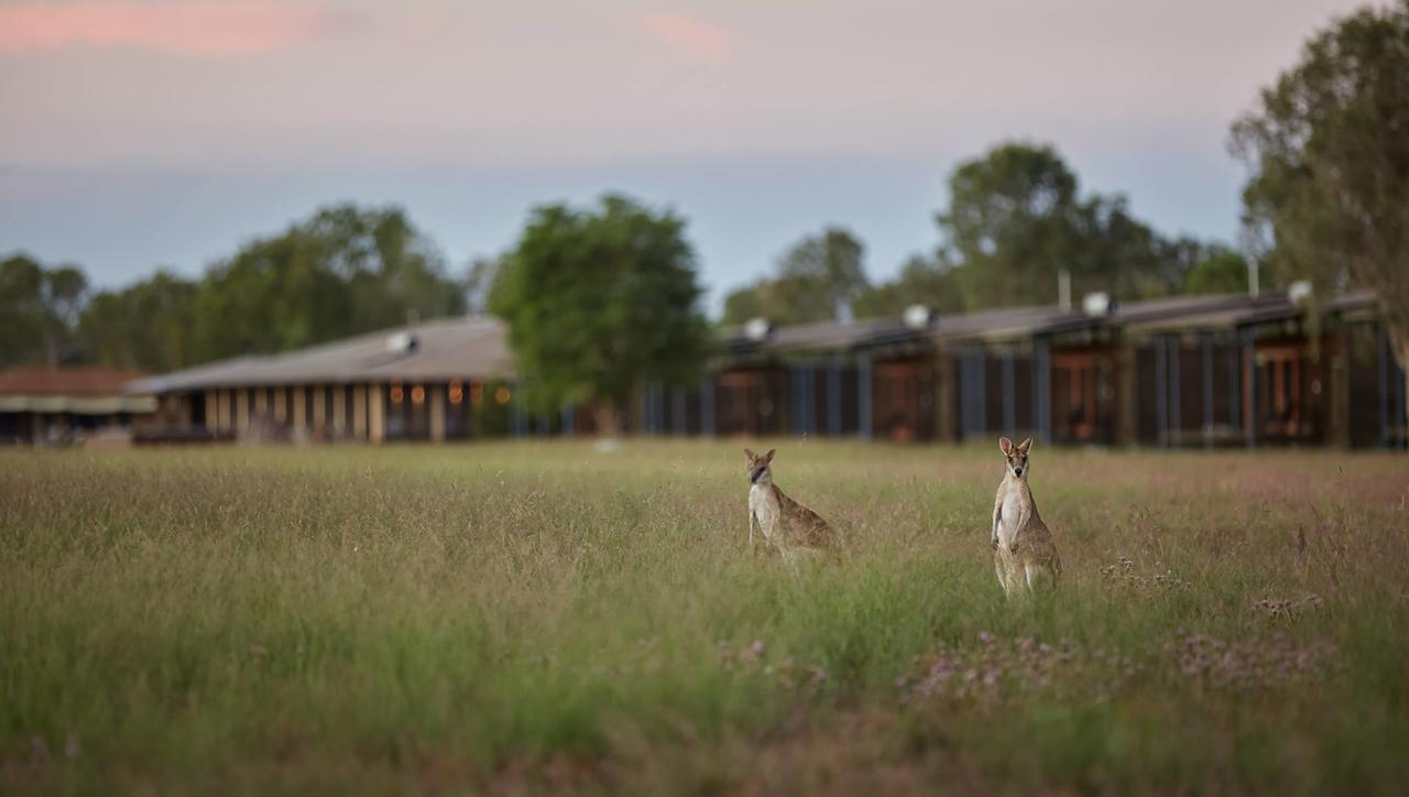 Wildman Wilderness Lodge - Tourism Bookings WA