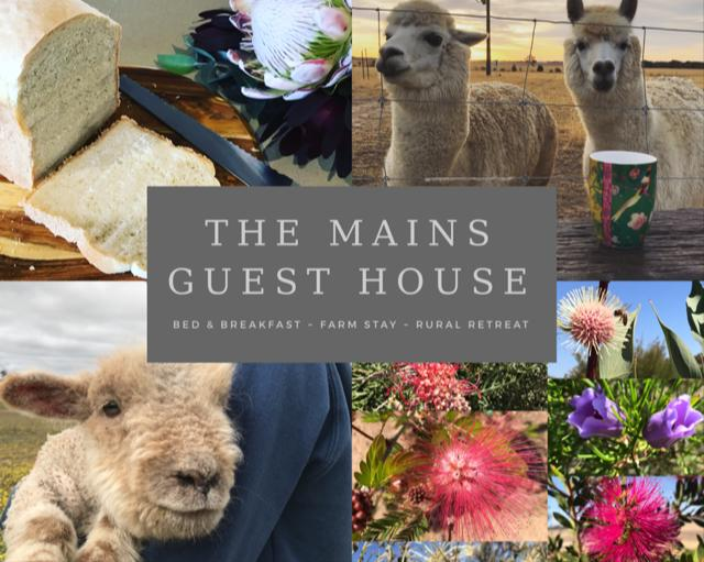 The Mains Guest House - Tourism Bookings WA