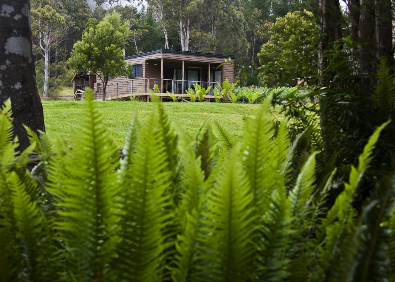 Tyenna River Cottage - Tourism Bookings WA